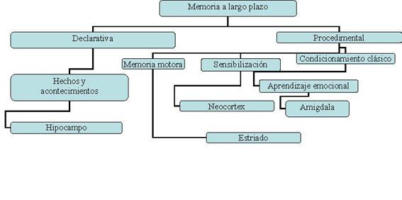 memorialargoplazo-2.jpg