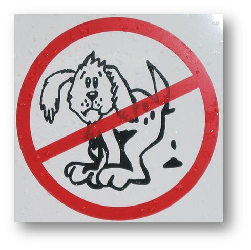 prohibido cacas perros